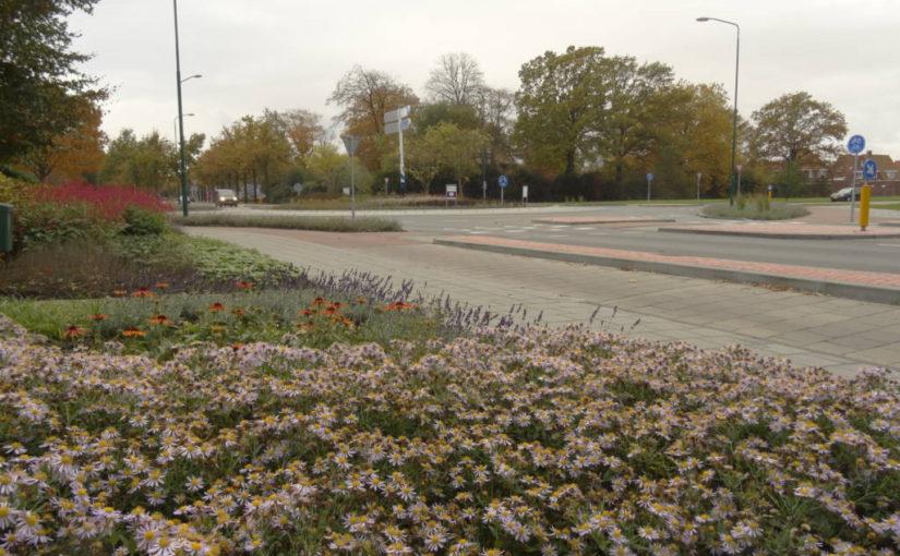 Samenwerken voor een groenere wijk